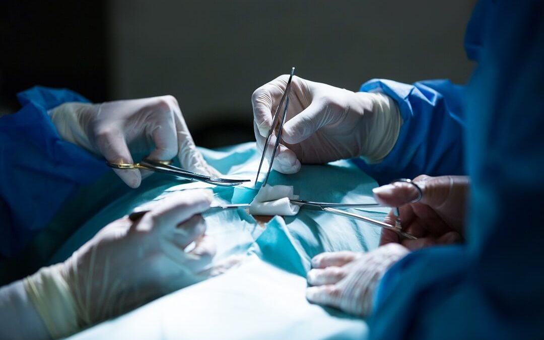 How does medical malpractice law shield a surgical error?